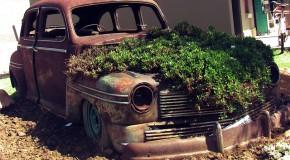 L'obligation d'assurer tout véhicule……